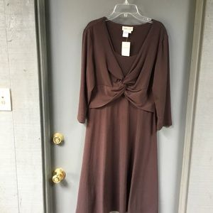 Coldwater Creek brown dress- perfect for anything!